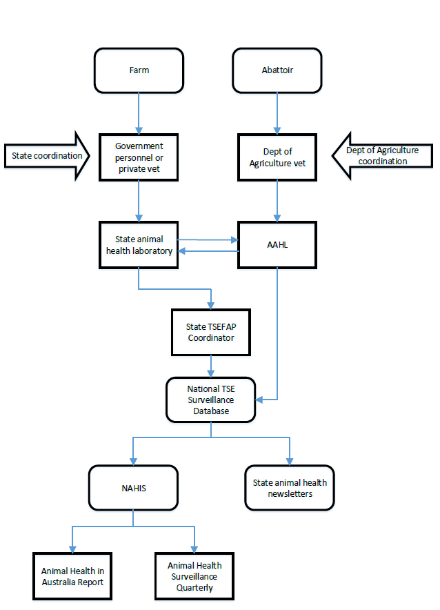 A flow diagram that shows how specimens are collected from farms and abattoirs by private and government veterinarians, analysed at animal health laboratories, stored in a central database, reviewed by TSEFAP stakeholders, and reported in AHA communications
